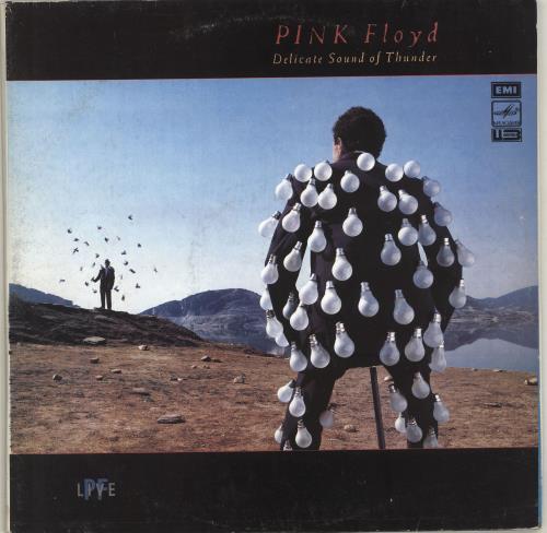 Pink Floyd Delicate Sound Of Thunder 2-LP vinyl record set (Double Album) Russian PIN2LDE250179