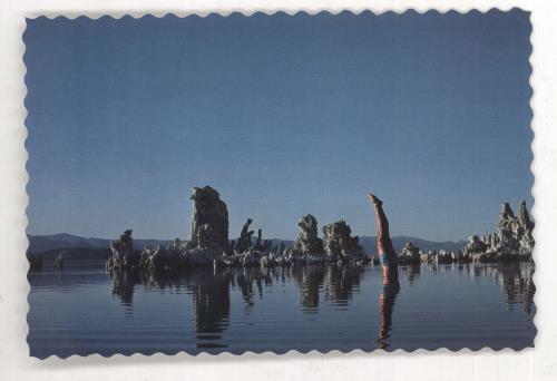 Pink Floyd Wish You Were Here + Postcard, poster & Both Shrink Stickers vinyl LP album (LP record) Japanese PINLPWI531438