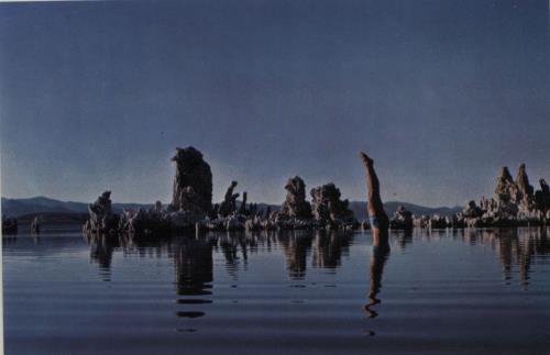 Pink Floyd Wish You Were Here + Postcard Greek vinyl LP album (LP ...