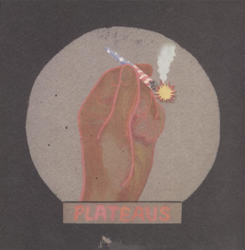 "Plateaus Open Skies 7"" vinyl single (7 inch record) US ZL107OP716537"