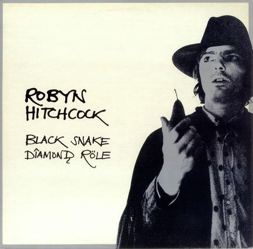 Robyn Hitchcock Black Snake Diamond Role vinyl LP album (LP record) UK RHILPBL116630