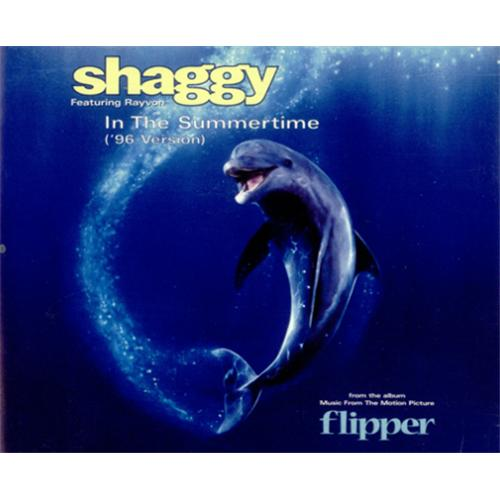 "Shaggy In The Summertime - '96 Version CD single (CD5 / 5"") UK GGYC5IN422860"