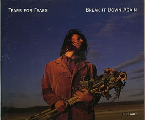 Tears For Fears Break It Down Again UK CD single (CD5 / 5