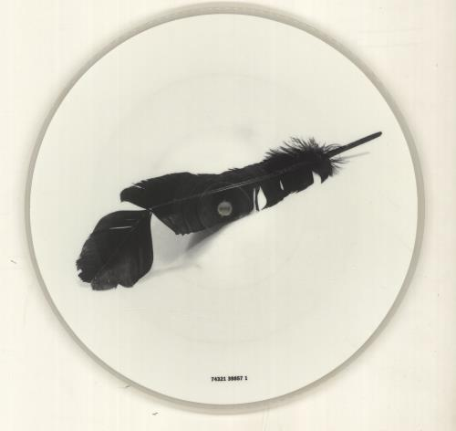 "The Black Crowes One Mirror Too Many 10"" Vinyl Picture Disc (10"" Record Single) UK CRW1PON164359"