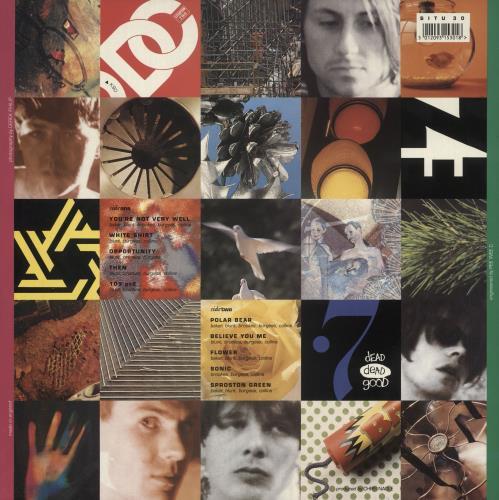 The Charlatans (UK) Some Friendly - PVC Sleeve vinyl LP album (LP record) UK CHALPSO742187
