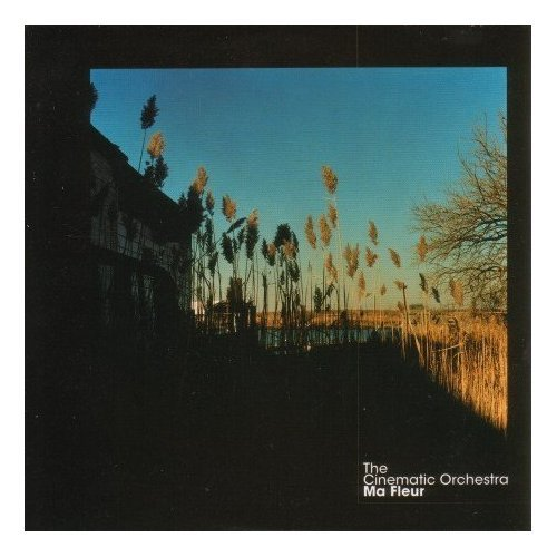 cd the cinematic orchestra