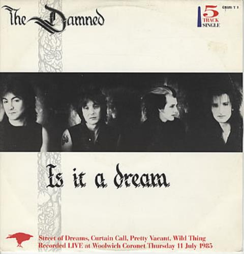 """The Damned Is It A Dream 12"""" vinyl single (12 inch record / Maxi-single) UK DAM12IS145855"""