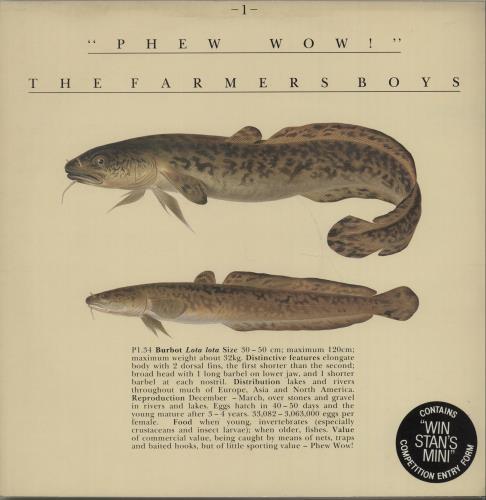 "The Farmers Boys Phew Wow 12"" vinyl single (12 inch record / Maxi-single) UK FBO12PH669761"