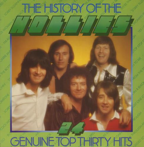 The Hollies The History Of The Hollies 2-LP vinyl record set (Double Album) UK HLL2LTH411465