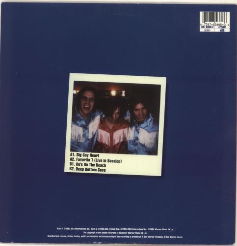 "The Lemonheads Big Gay Heart 10"" vinyl single (10"" record) UK LEM10BI189099"