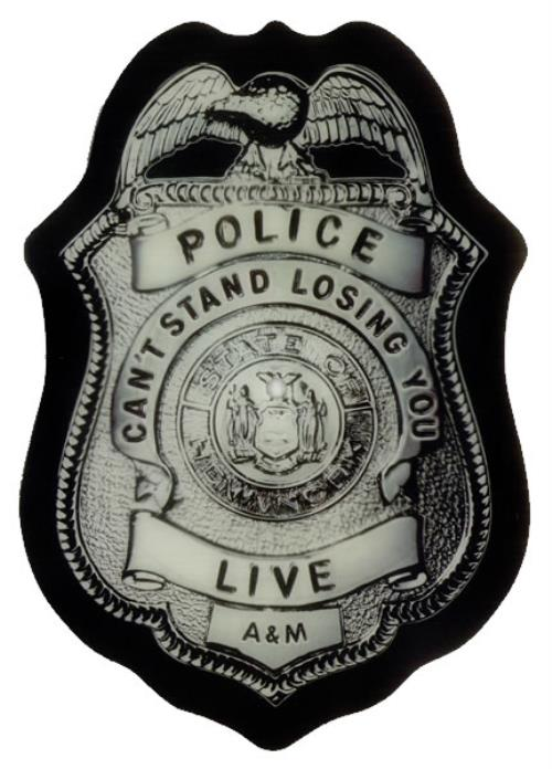 The Police Can't Stand Losing You - EX shaped picture disc (picture disc vinyl record) US POLSHCA537873