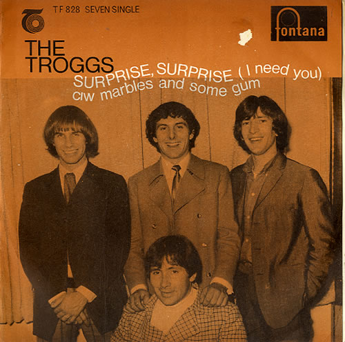 """The Troggs Surprise Surprise 7"""" vinyl single (7 inch record) South African TRG07SU629522"""