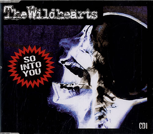 The Wildhearts So Into You 2-CD single set (Double CD single) UK WDH2SSO245000