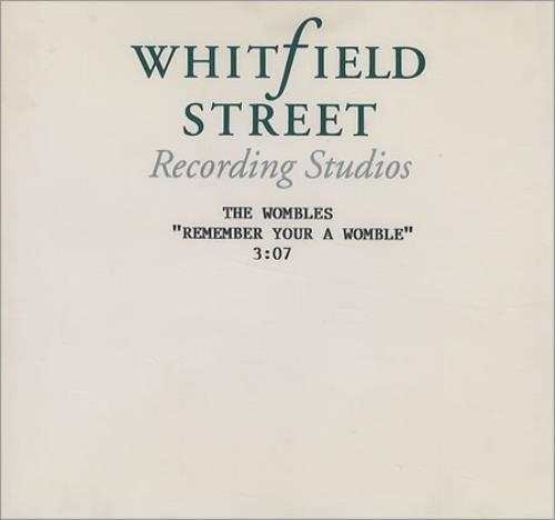 The Wombles Remember You're A Womble CD-R acetate UK WMBCRRE423650