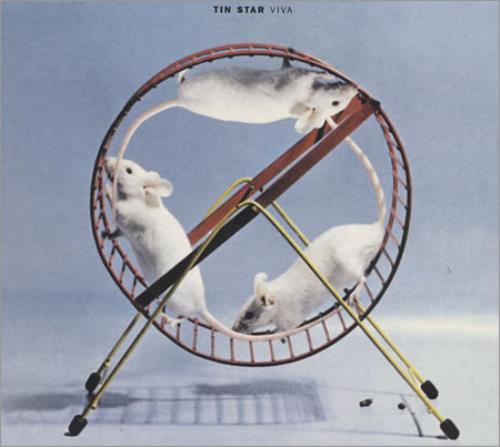 "Tin Star Viva CD single (CD5 / 5"") UK -TSC5VI256013"