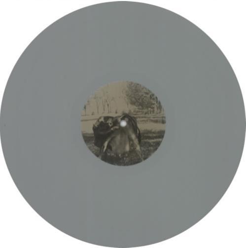 Tool Undertow Grey Vinyl Us Promo Vinyl Lp Album Lp