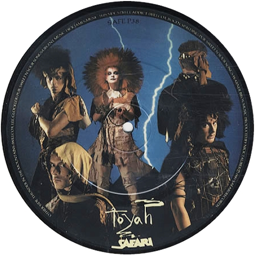 """Toyah Thunder In The Mountains 7"""" vinyl picture disc 7 inch picture disc single UK TYH7PTH41632"""
