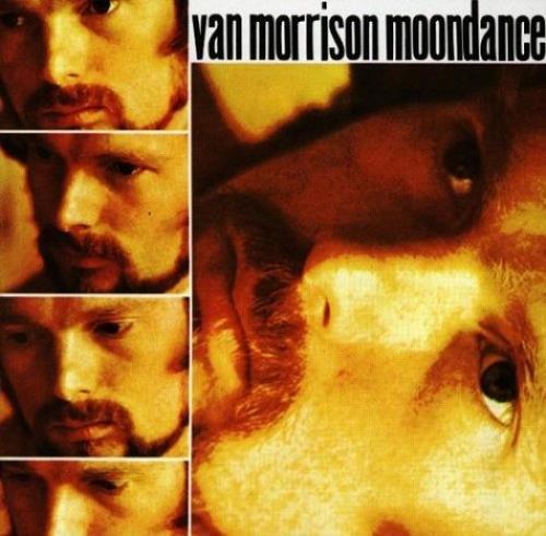 Van Morrison Moondance CD album (CDLP) German VMOCDMO580934