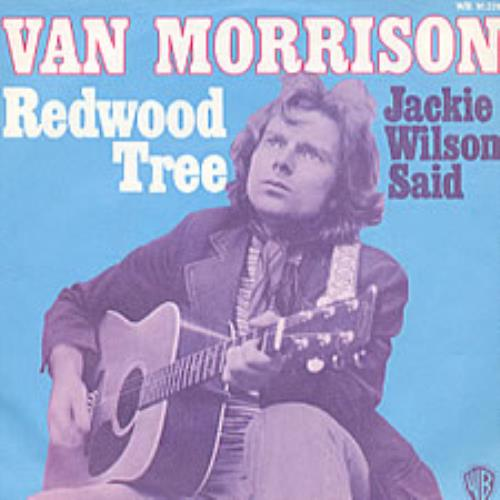 "Van Morrison Redwood Tree 7"" vinyl single (7 inch record) German VMO07RE212015"