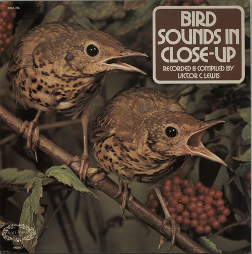 Various-Nature, Birds, Whales & Wildlife Bird Sounds In Close-Up vinyl LP album (LP record) UK XAULPBI638063