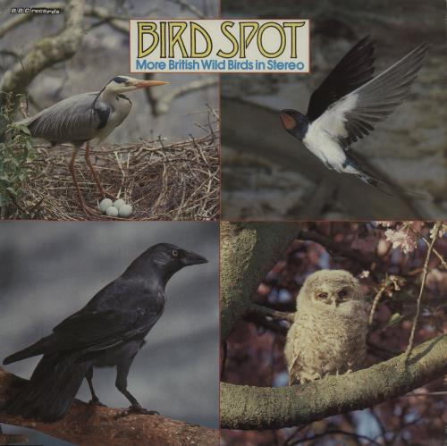 Various-Nature, Birds, Whales & Wildlife Bird Spot: More British Wild Birds In Stereo vinyl LP album (LP record) UK XAULPBI661380
