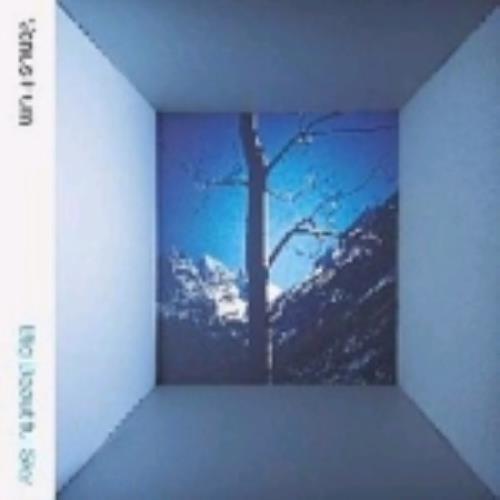 Venus Hum Big Beautiful Sky CD album (CDLP) UK VHUCDBI243728