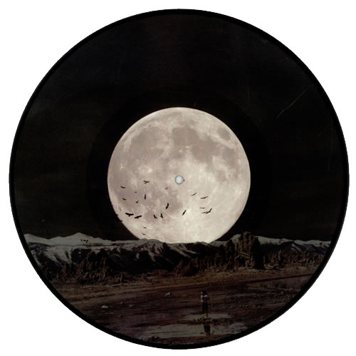 """Wolfmother New Moon Rising 12"""" vinyl picture disc 12inch picture disc record UK WLO2PNE485953"""