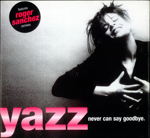 "Yazz Never Can Say Goodbye 12"" vinyl single (12 inch record / Maxi-single) UK YZZ12NE187540"